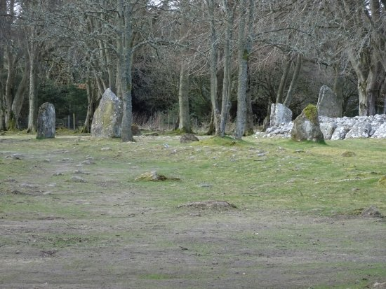 Local Eyes Tours: Clava Cairns