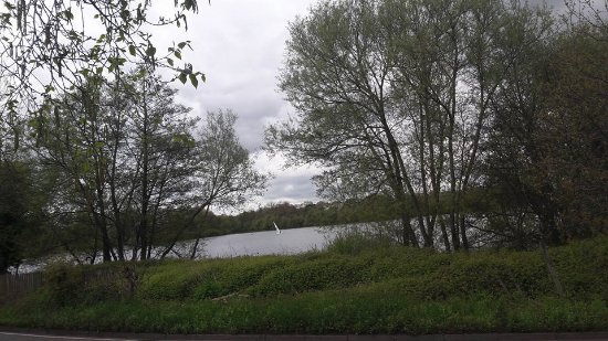 Elstree, UK: The Fishery view of the lake