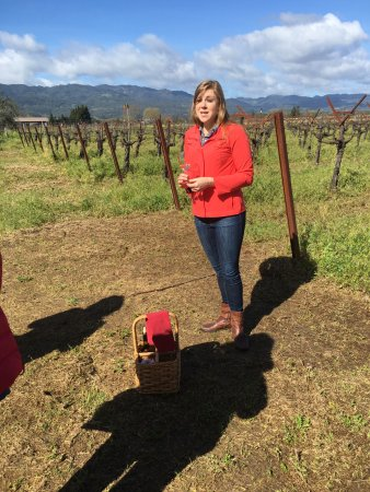 Rutherford, CA: Tour guide with Vineyards