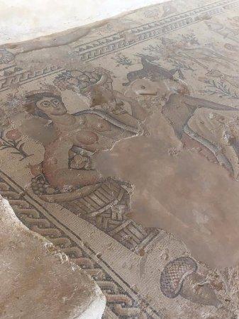 Zippori, Ισραήλ: Мозаика