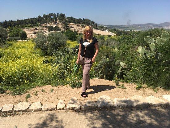 Zippori, Ισραήλ: За спиной - национальный парк Циппори