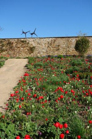 Cambo Estate Gardens: Cambo's beautiful garden