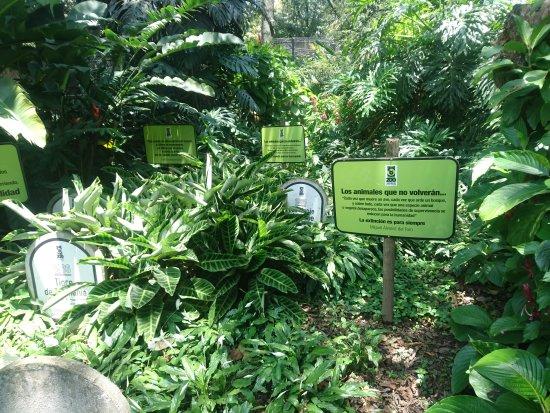 Parque Zoologico Santa Fe: Awareness zone