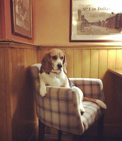 McKays Hotel, Bar & Restaurant: photo0.jpg
