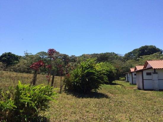 Finca Lindos Ojos: photo5.jpg