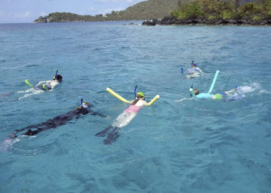 West End, Tortola: Off on our final snorkeling adventure ... thar' be sharks below