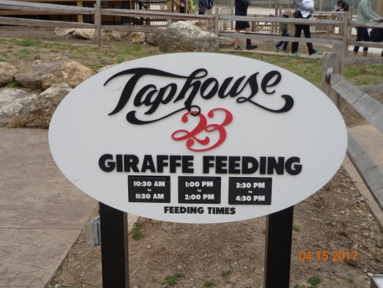 Norristown, Pensilvania: Giraffe feeding sign