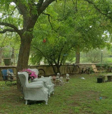 Utopia, تكساس: Backyard