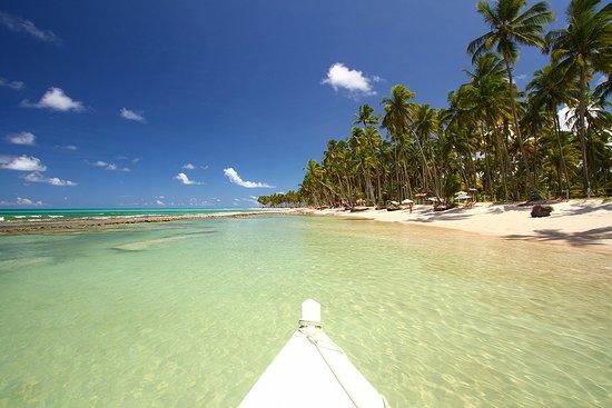 Praia dos Carneiros Foto