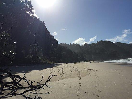 Waihi Beach, Nowa Zelandia: Pristine Beach