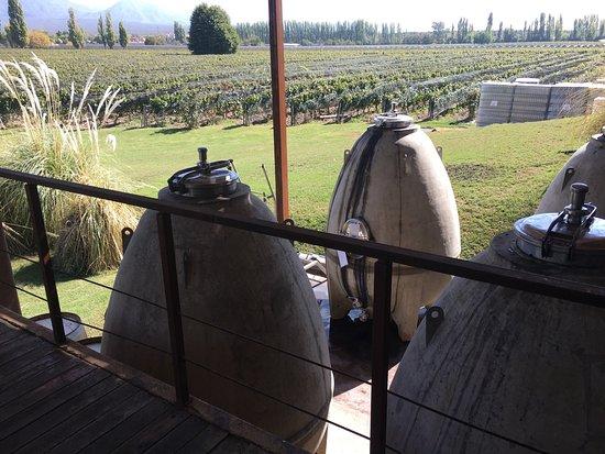 Province of Mendoza, الأرجنتين: photo2.jpg