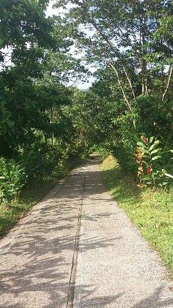 Marigot ภาพถ่าย
