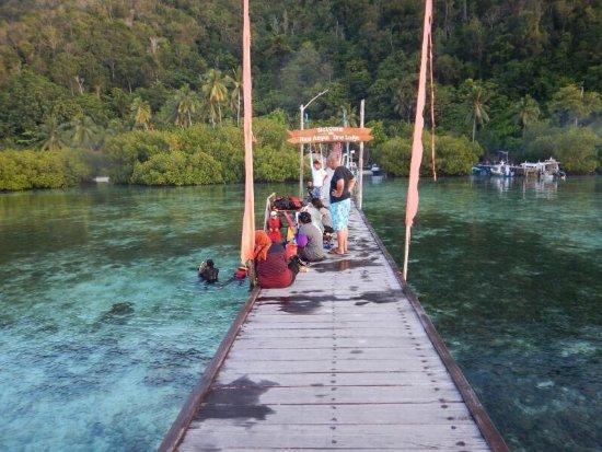 Mansuar Island, Indonesia: photo0.jpg