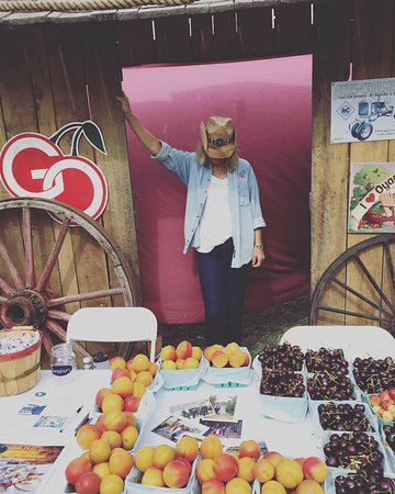Oyama, Canadá: Come get your fruit!!