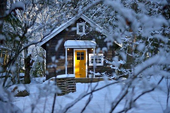 Brackendale, Canadá: Logger's Shack in winter