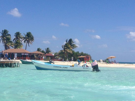 Crystal Clear Water Picture Of Belize Cruise Excursions Goff S Caye Beach And Snorkeling