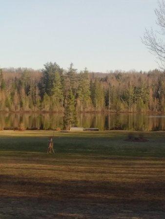Bancroft, Kanada: IMG_20170414_1824465_large.jpg