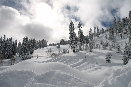 South Lake Tahoe, Californien: Snowy paradise!