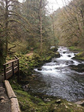 Mapleton, Oregon: photo0.jpg