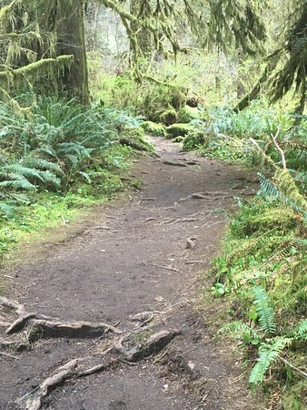 Mapleton, Oregon: photo2.jpg
