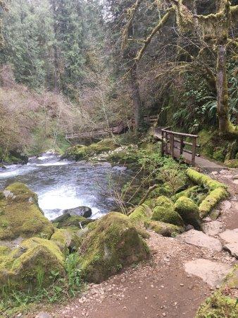 Mapleton, Oregon: photo3.jpg