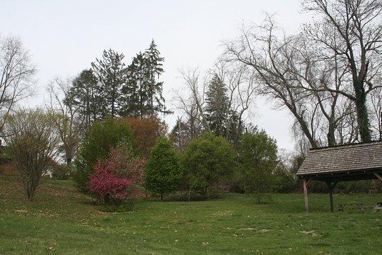 Abingdon, VA: Big park area