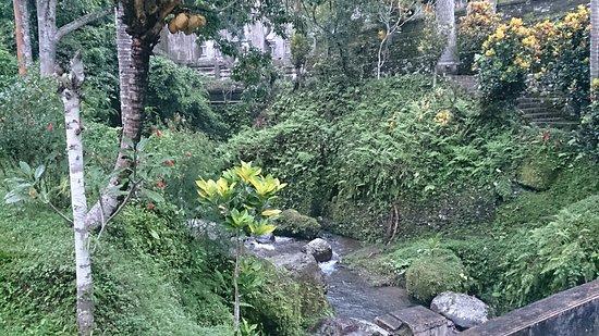 Mount Kawi: DSC_2916_large.jpg