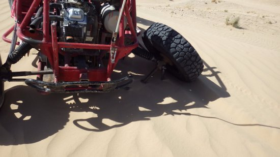 Sun Buggy & ATV Fun Rentals: My son broke his axle during the ride. They drove out a replacement vehicle in ten minutes.