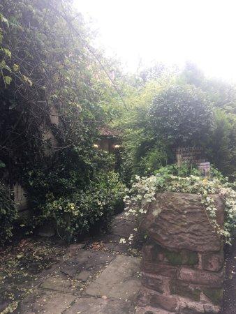 Alderley Edge, UK: photo3.jpg