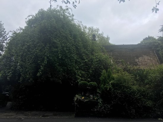 Alderley Edge, UK: photo4.jpg