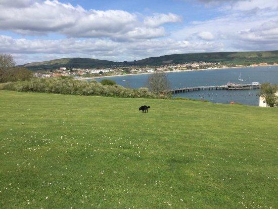 Swanage Bay View: photo0.jpg
