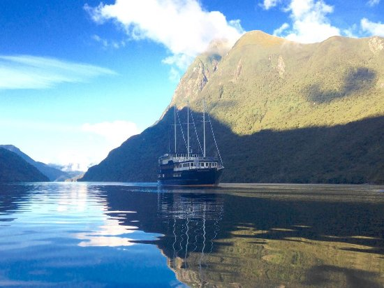 Doubtful Sound Wilderness Day Cruises – Real Journeys: photo1.jpg