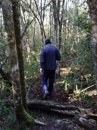 Rheenendal, แอฟริกาใต้: Walking Trail