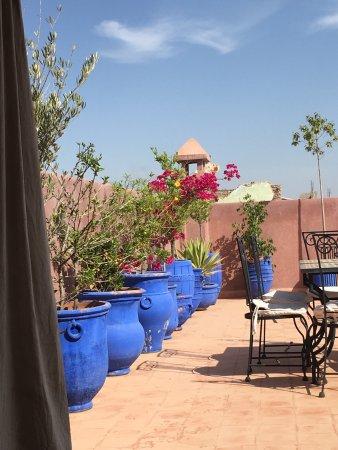 夏洛瑪里德瑪拉克飯店照片