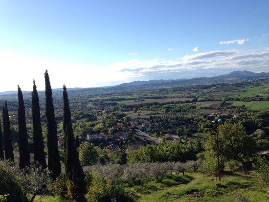 Bettona, Italy: photo2.jpg