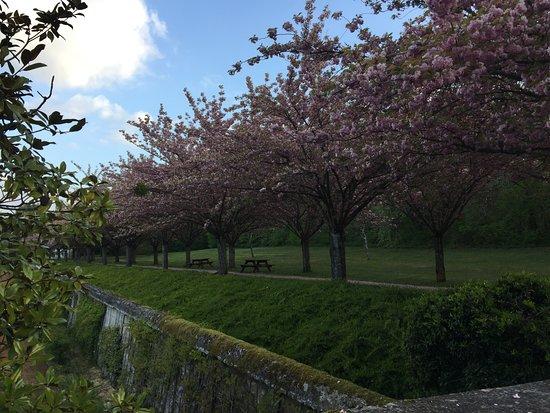 Cellettes, France: Allée du parc du château de Beauregard