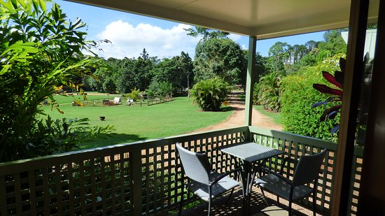 Malanda Falls Caravan Park: Overlooking the Paddock with the Animal Nursery from the Front Balcony.