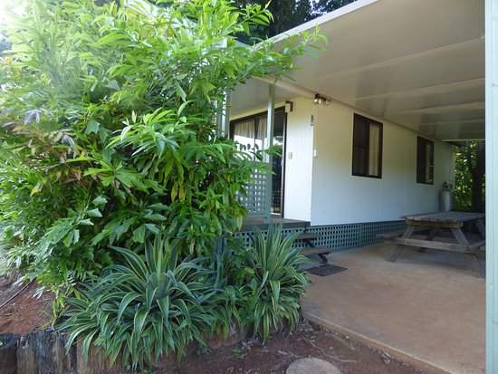Malanda Falls Caravan Park: The front of the Unit.