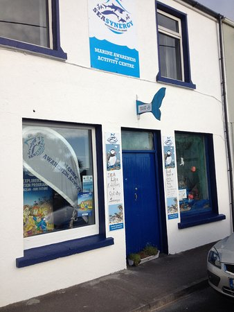 Sea Synergy Marine Awareness & Activity Centre