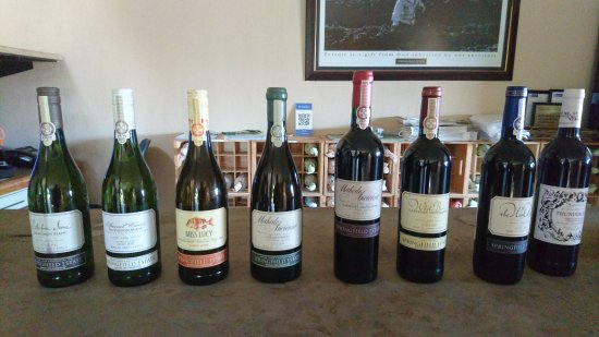 Robertson, South Africa: Tasting room line up