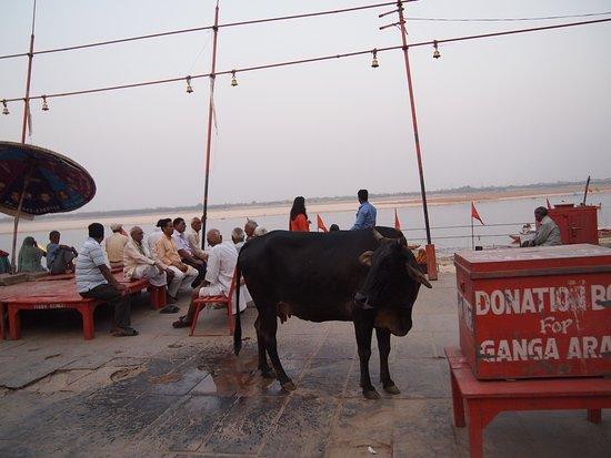 Palace on Ganges: photo2.jpg