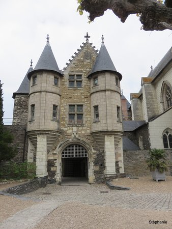 Castle of Angers: chateau
