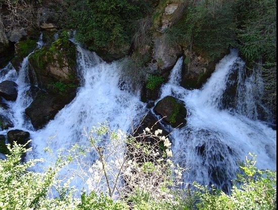 Castellar de n'Hug, Spain: photo0.jpg