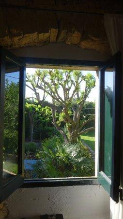 Fontclara, España: Vista desde ventana