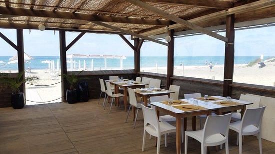 Calambrone, Italien: La veranda