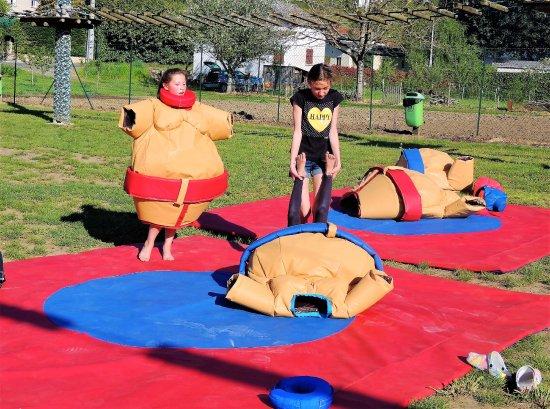 Souillac, Fransa: combat de sumos