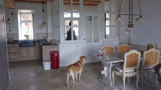 Neuenkirchen, Almanya: Eingangsbereich Suite mit Küche