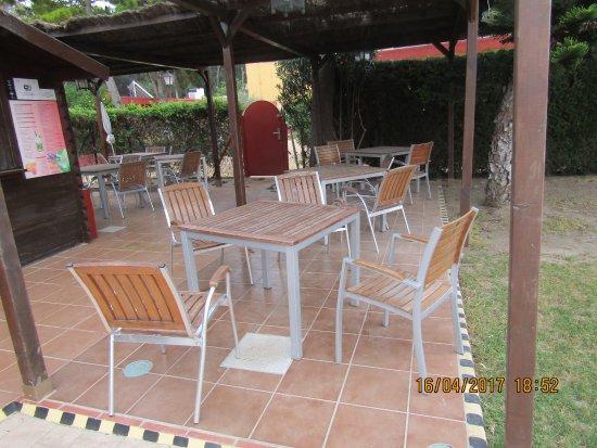 Hotel Dunas Puerto: TERRAZA JARDIN