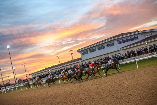 ‪Chelmsford City Racecourse‬