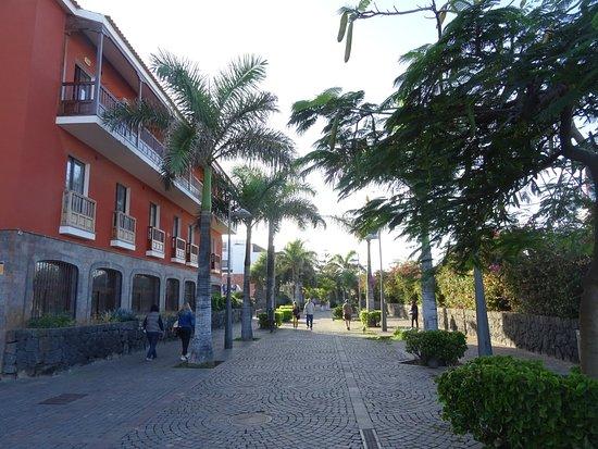 Puerto de la cruz paseo picture of oficina de turismo for Oficina de turismo amsterdam